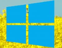 Стало известно, когда выйдет очередное крупное обновление Windows 10