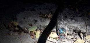 У Дніпрі патрульні затримали ймовірного крадія кабелю